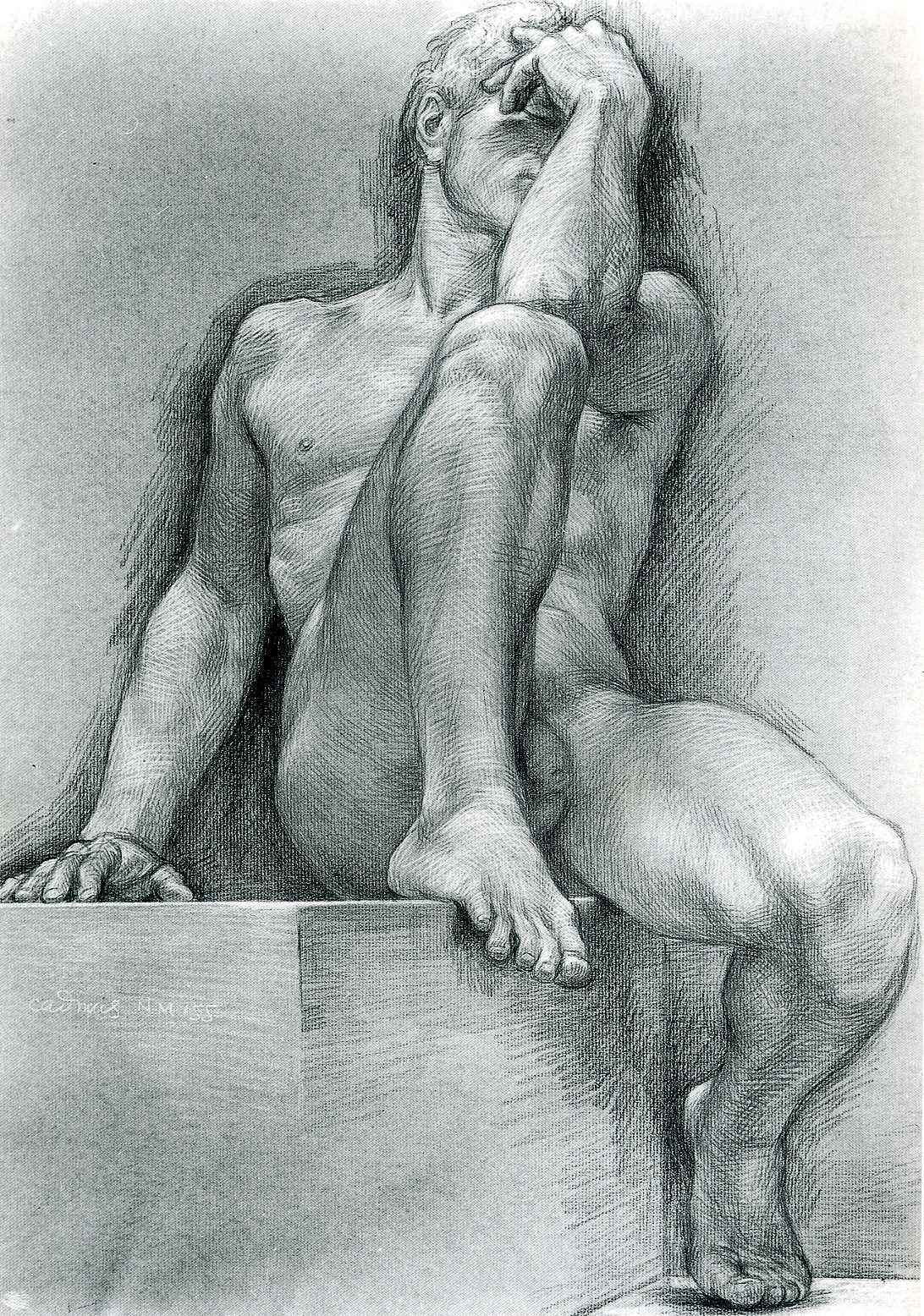 male nudes of drawings