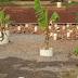 Brasileiro desenvolve sistema natural para tratamento de esgoto