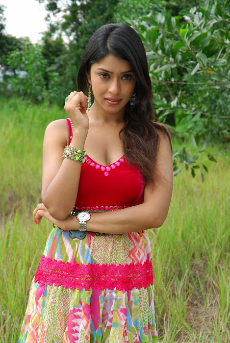 payal gosh , payal gosh new spicy actress pics