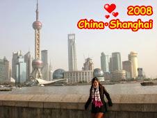 2008年上海行