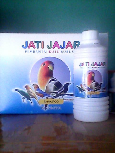 JATI JAJAR