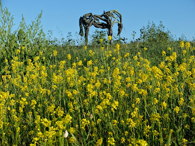 Deborah Butterfield Horse with Rapeseed