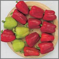 Сладкий перец сорт «Ерошка»