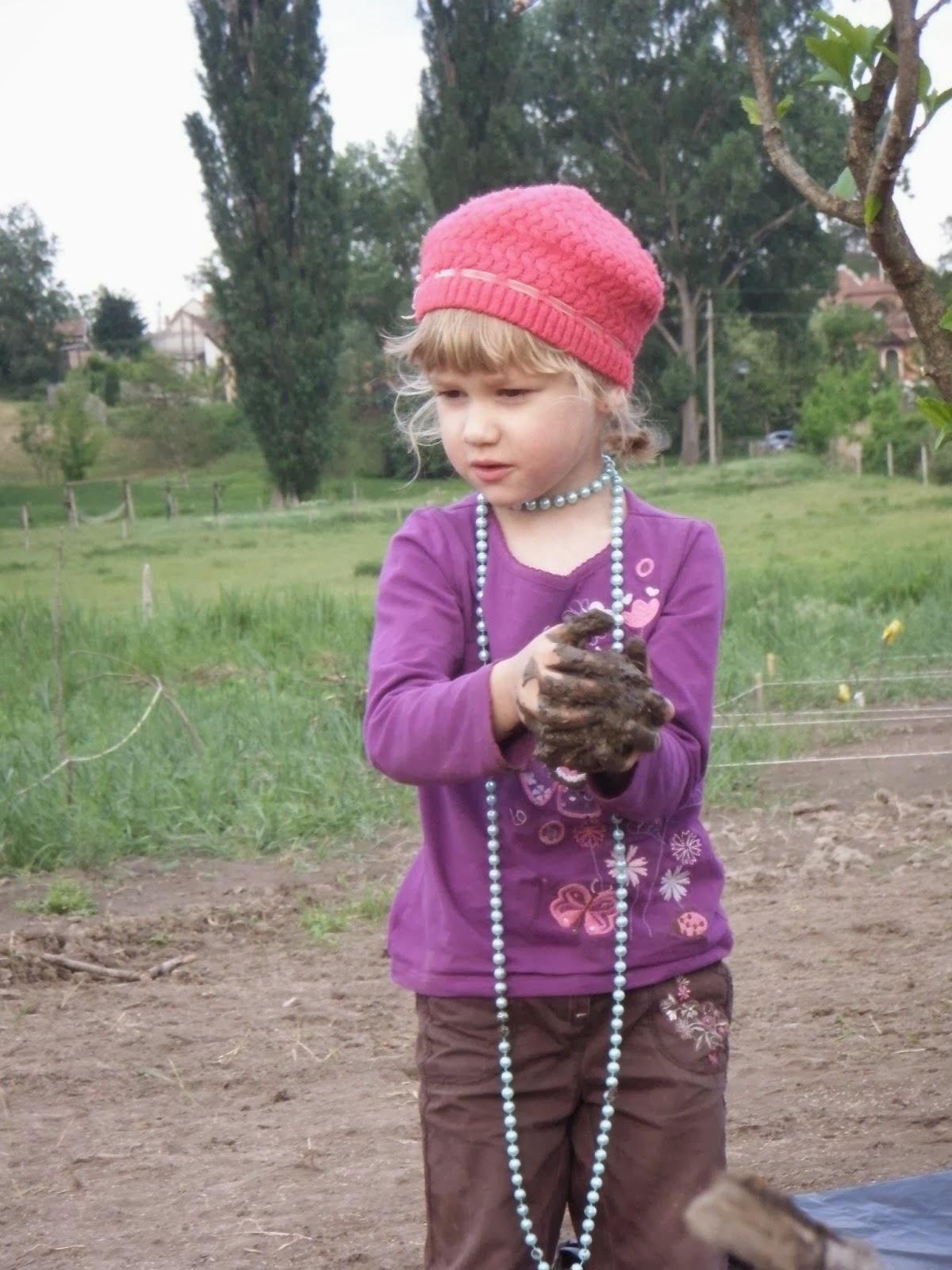 Dunakeszi közösségi kert - Dunakert: biozöldség - gyerekkel, családdal, együtt