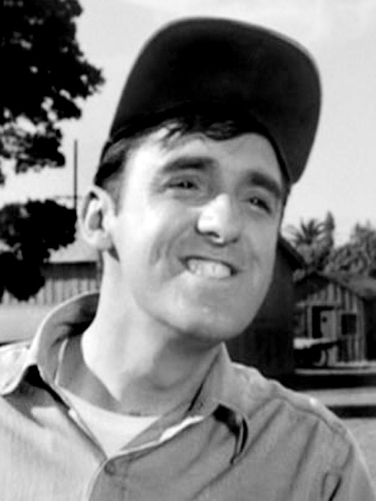 Jim Nabors Golly >> Blue Truck, Red State: Gomer Got Married