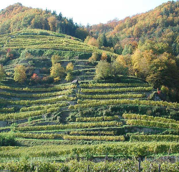 Wachau Cultural Landscape Austria