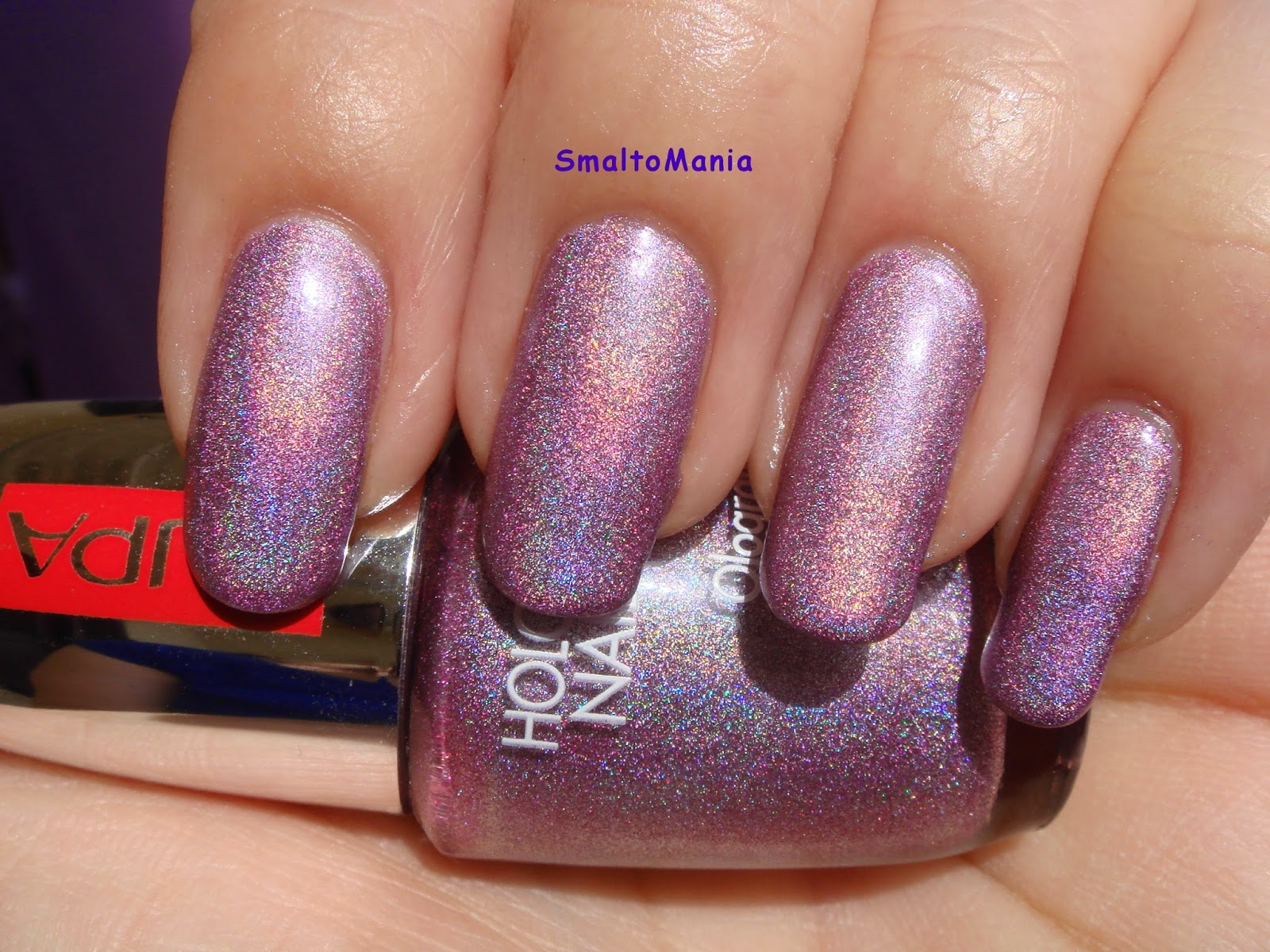 Pupa n.36 Holographic Lilac