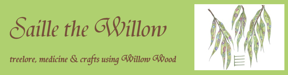 Saille the Willow