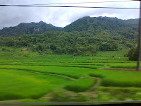 The Heaven of South Sulawesi (Sulawesi Selatan): Camba