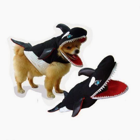 killer whale dog costume