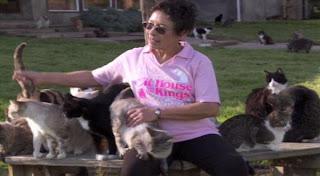 Lynea Lattanzio, Wanita yang Hidup dengan 700 Kucing