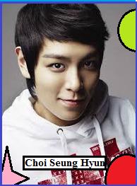 Profil Biodata Choi Seung Hyun