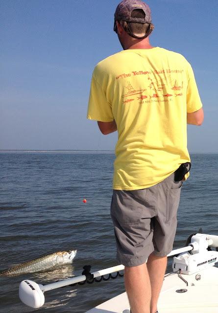 Myrtle beach fishing report tarpon fishing report aug 2013 for Myrtle beach surf fishing report