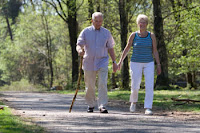 Gait Analysis Shows that Stride Speed and Variability May Track with Cognitive Impairment