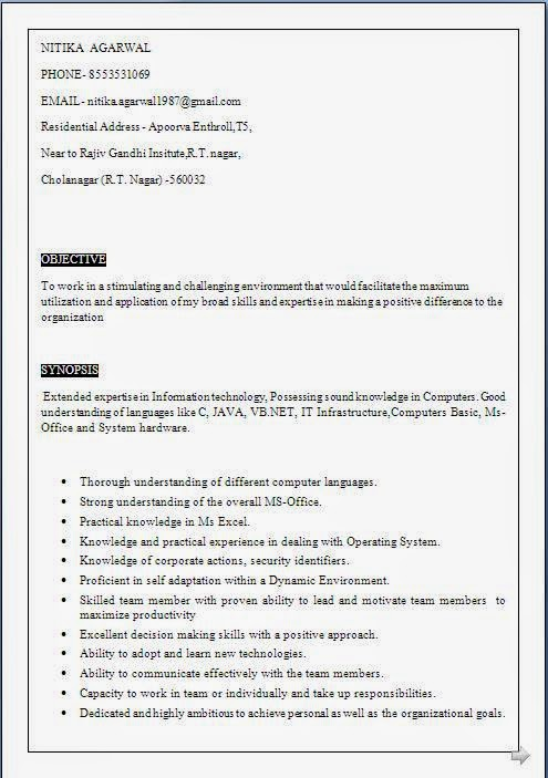 Sample IT CV Template      Free Documents Download in Word  PDF VisualCV