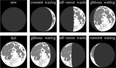Phases of the moon from scienceworld.wolfram.com