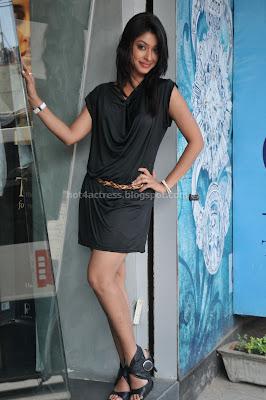 Payal ghosh hot and sexy image