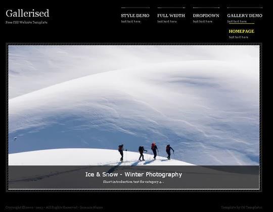 Gallerised Website
