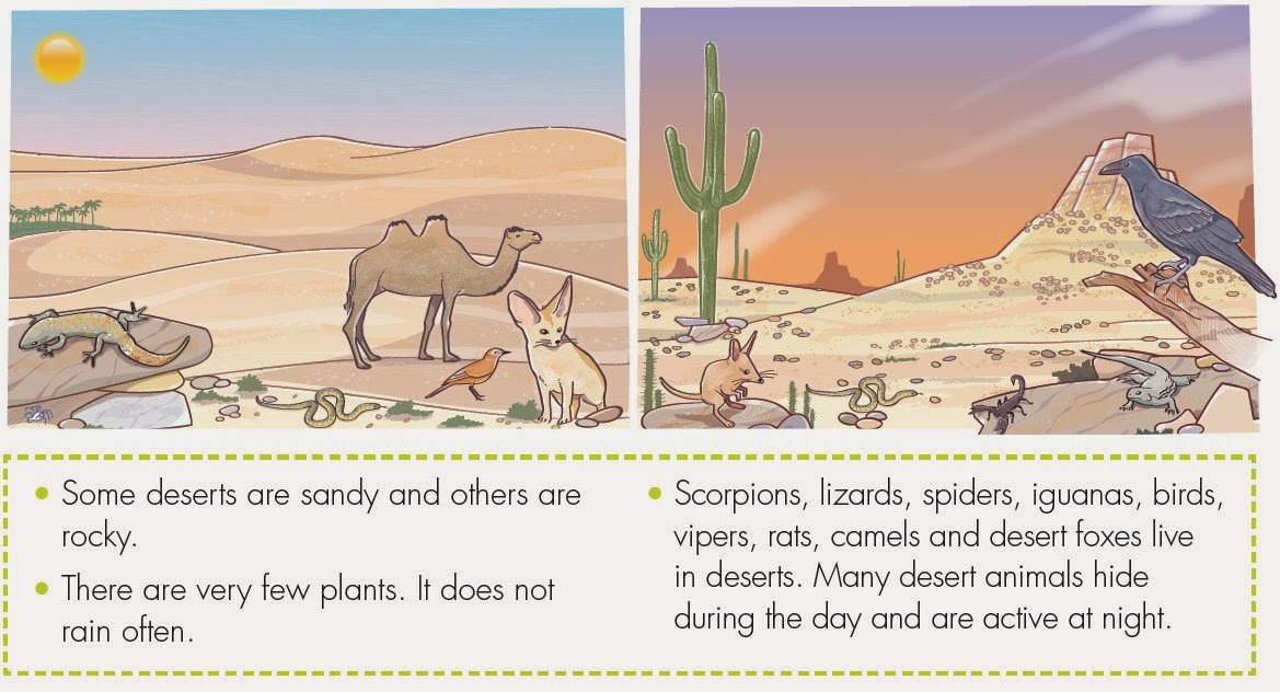 Why are deserts hot in the day and cold at night?