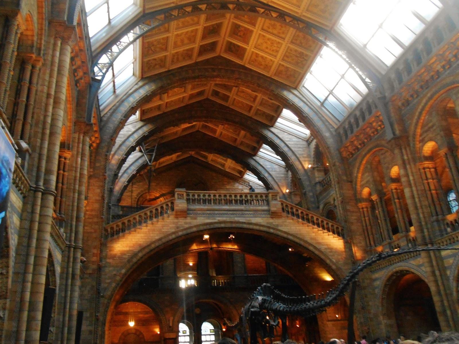 Dinozaur w Muzeum Historii Naturalnej.