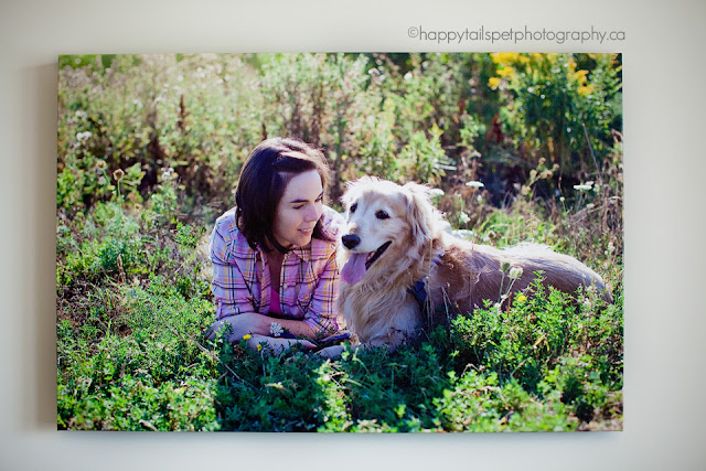 Gallery wrap canvas of golden retriever dog and woman in field by ontario pet photographer.