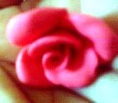 Mini Rosas de Biscuit em Minutos