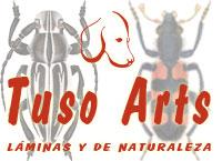 Láminas de Naturaleza Tuso Arts
