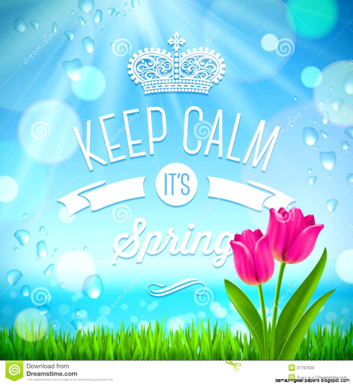Keep Calm Spring Quote Stock Vector   Image 39167340