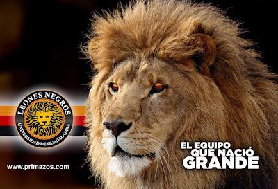 Hoy Final Liga Ascenso Apertura 2013