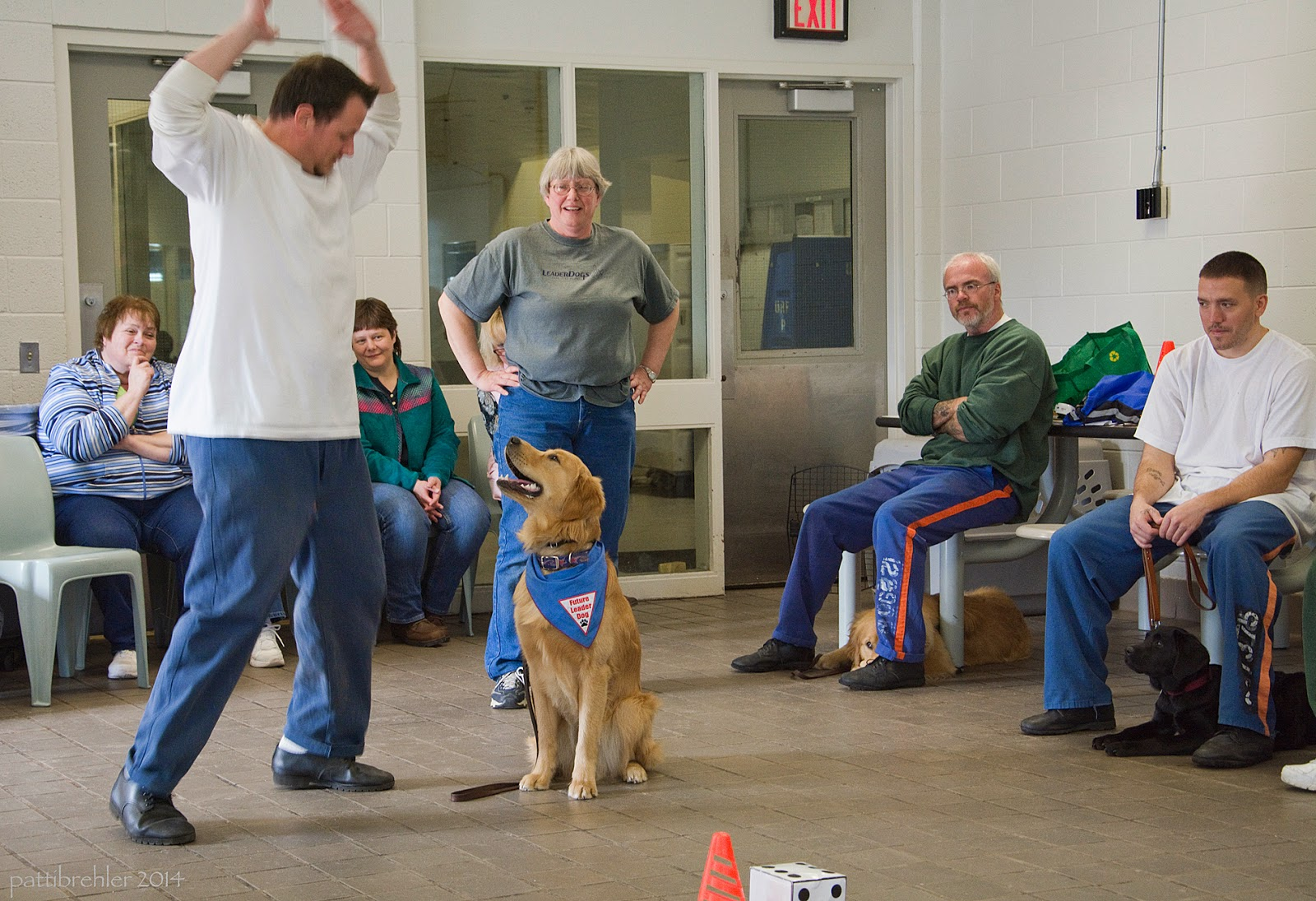 This man is now in mid jumping-jack and he is looking down at the golden retriever, who is looking back at him. The woman standing behind is smiling at the pair. The photo now shows two men sitting on the right side, the same man with the golden, and the man with the black lab, who is also lying niced under him. There are two other women sitting down directly behind the man jumping.