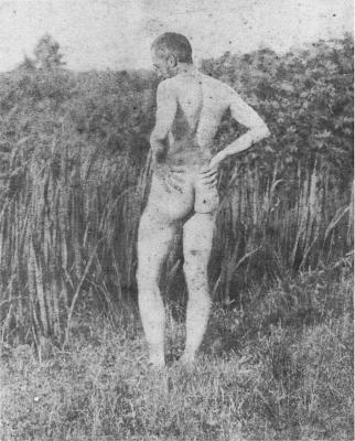 Thomas_Eakins_nude_models_5.png
