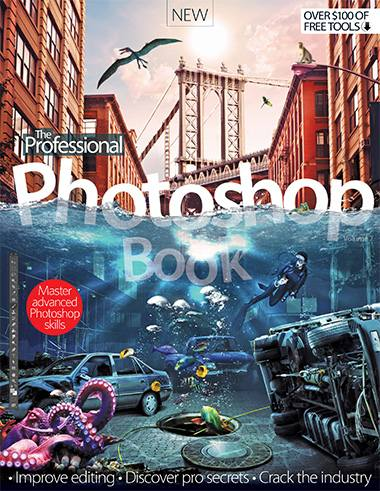 The Professional Photoshop Book Vol. 7
