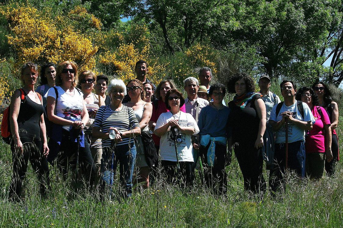 Empleo y desarrollo local en el valle del ambroz ofertas for Se necesita jardinero