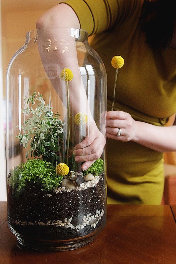 10 Indoor Winter Gardening Ideas