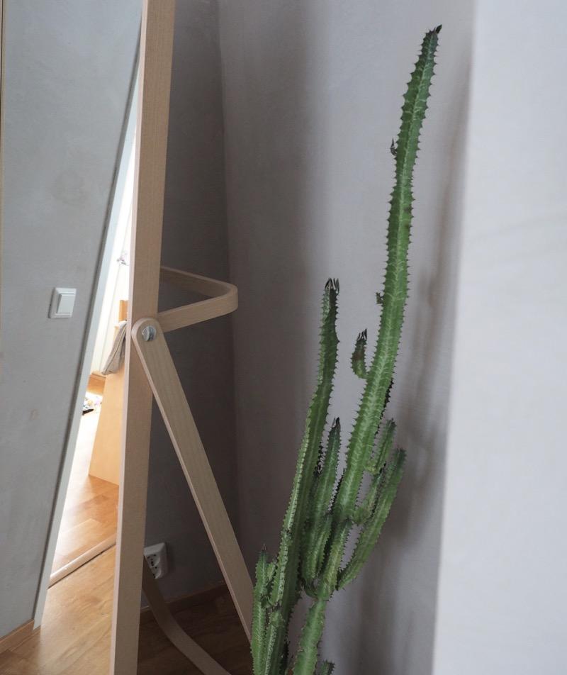 kaktus ja peili