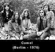 camel - 1976
