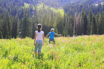 Albion Basin Little Cottonwood Secret Lake (Cecret Lake) Wildflower Hike