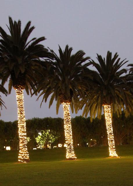 christmas lights fashion island