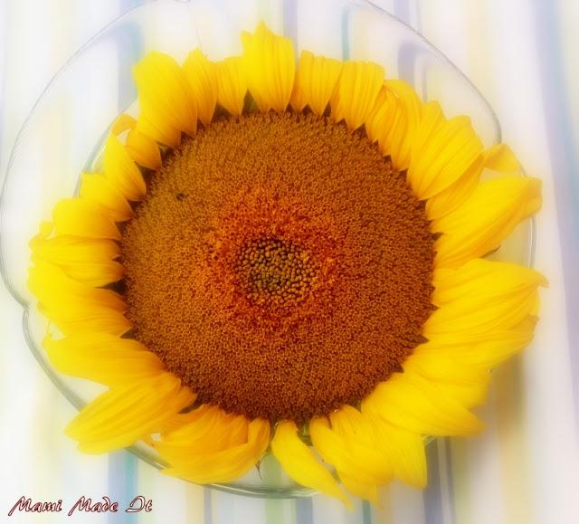 Sonnenblume - Mami Made It