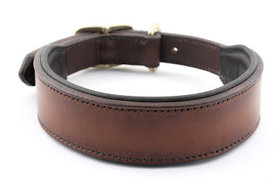 Large Dog Collar With Handle