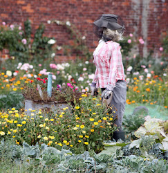 Gardening Scarecrow