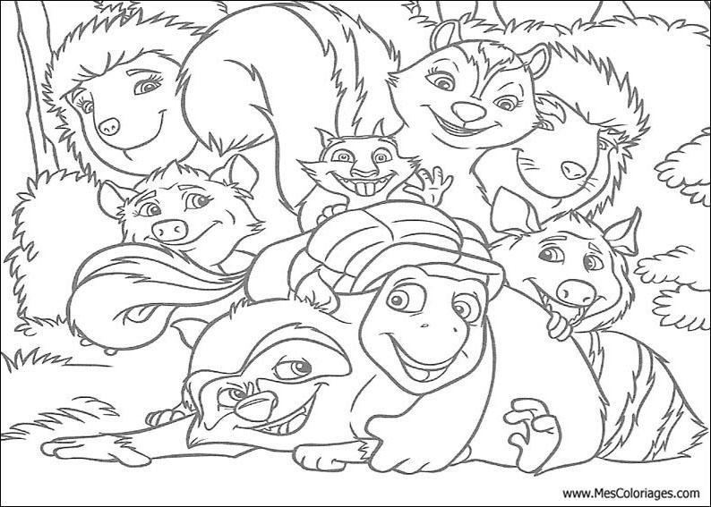 Desenhos Para Colorir Animais da floresta reunidos para copiar