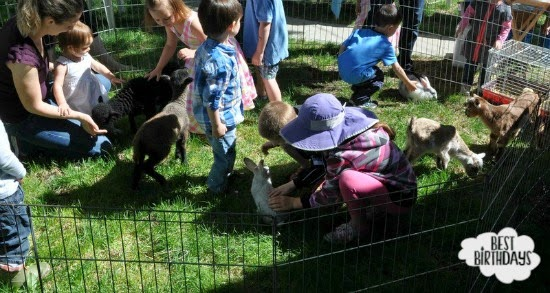 Butterfield Acres Mini Farm Parties  |  Best Birthdays