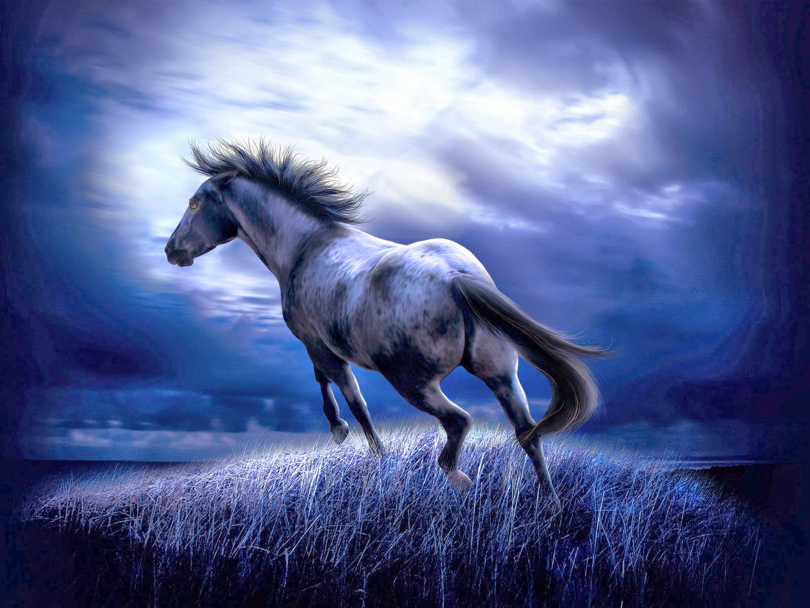 Free 3d Wallpapers Download Horse Wallpapers HD Wallpapers Download Free Images Wallpaper [1000image.com]