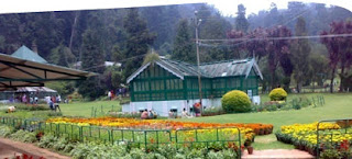 resorts in ooty