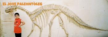 Presentacions de dinosaures
