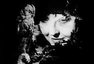 vintage portrait evgen bavcar