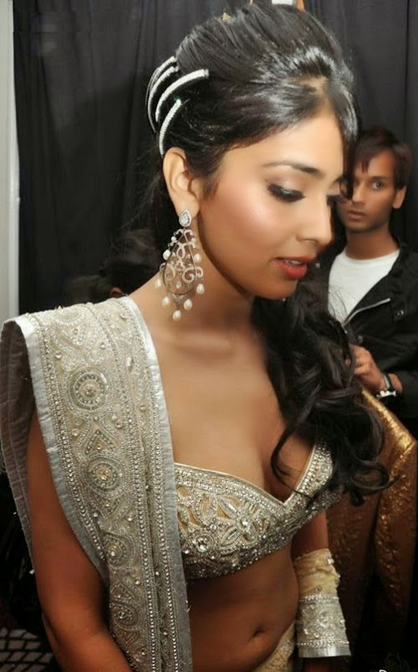 Shriya Saran hot hd cleavage wallpapers