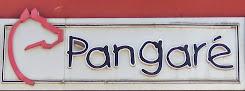 PANGARÉ CENTRO AUTOMOTIVO