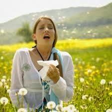 Remedio natural prevenir alergias